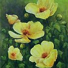 Buttercup Medley by Michael Beckett