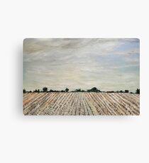 Cloudy Delta Canvas Print