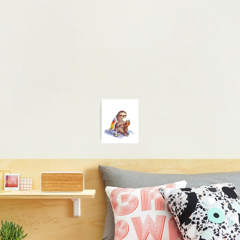 Cozy Sloth Photographic Print