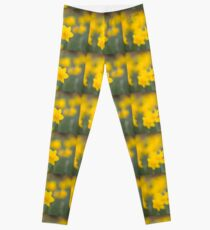 Daffodil yellow Leggings