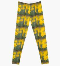 Daffodil yellow Leggings