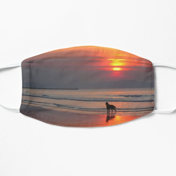 Sunset Irish Setter Silhouette on the Irish Sea Flat Mask