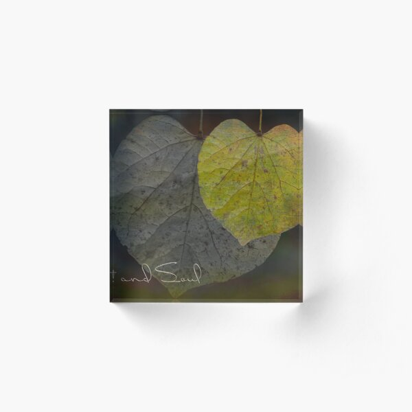 Heart and Soul Moody Leaves Acrylic Block