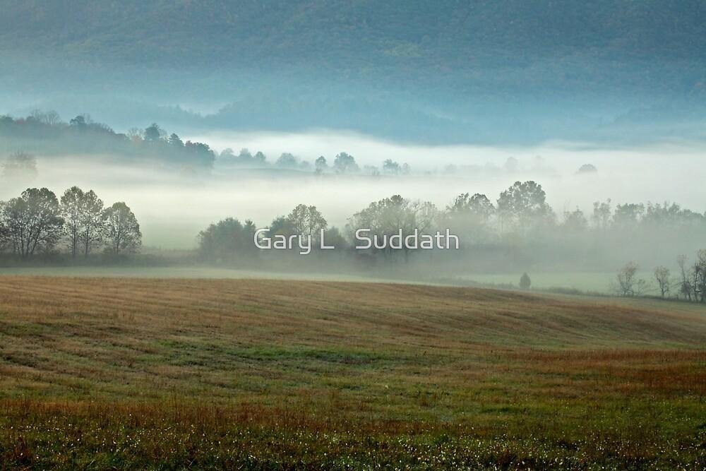 Misty Valley by Gary L   Suddath