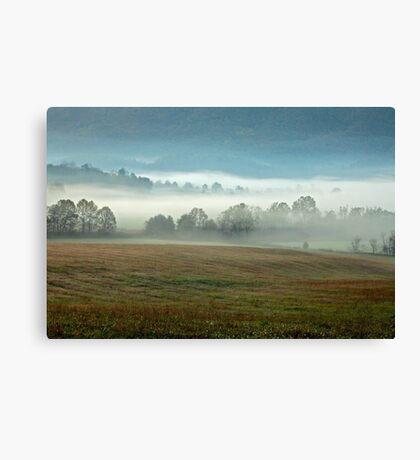 Misty Valley Canvas Print
