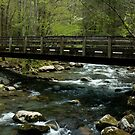 Porters Creek Bridge by Gary L   Suddath
