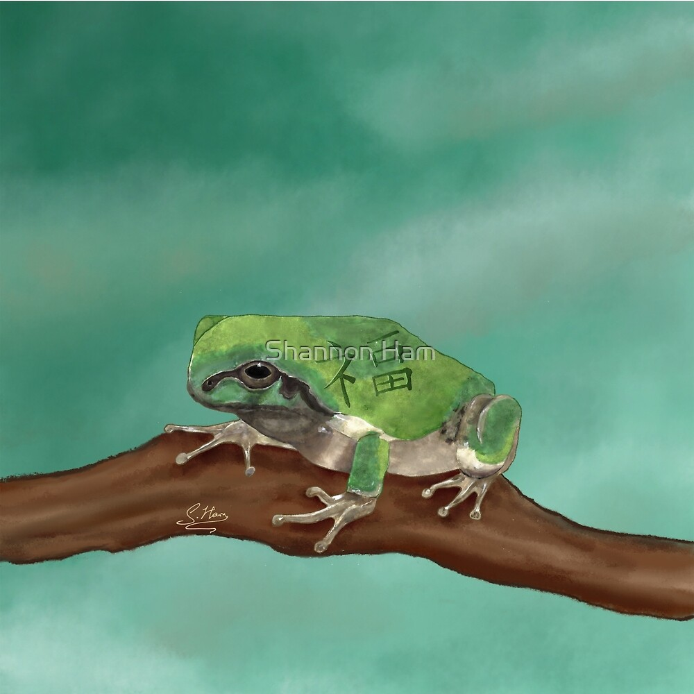 Fortune Frog on a Teal Sky by Shannon Ham