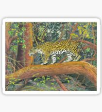 Jaguar Brazil Sticker