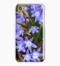 Glory of the Snow iPhone Case/Skin