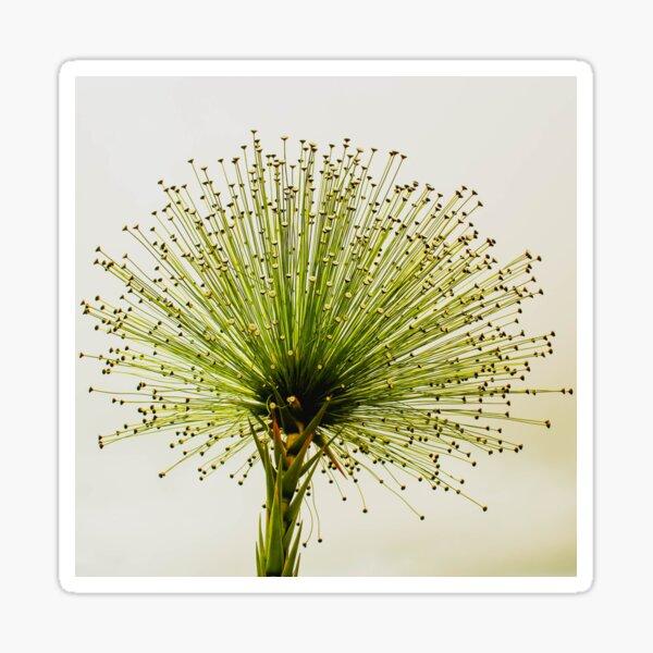A macro photo of a wonderful flower Sticker