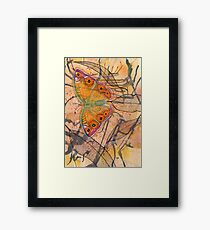 """Meadow Argus""  Framed Print"