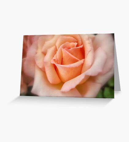 Tenderness! Greeting Card