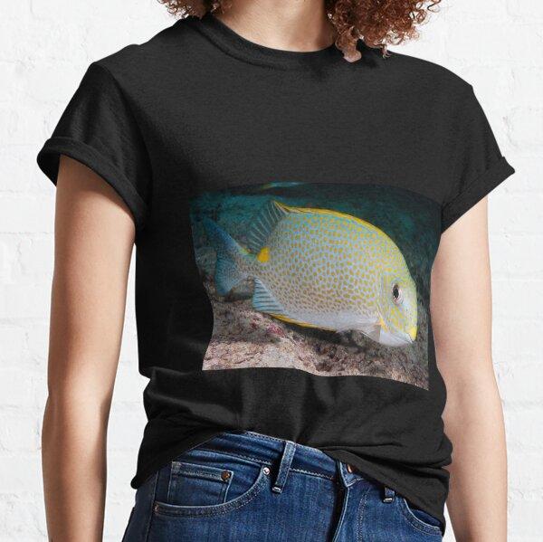 Golden Rabbitfish, Kapalai, Sabah, Malaysia Classic T-Shirt