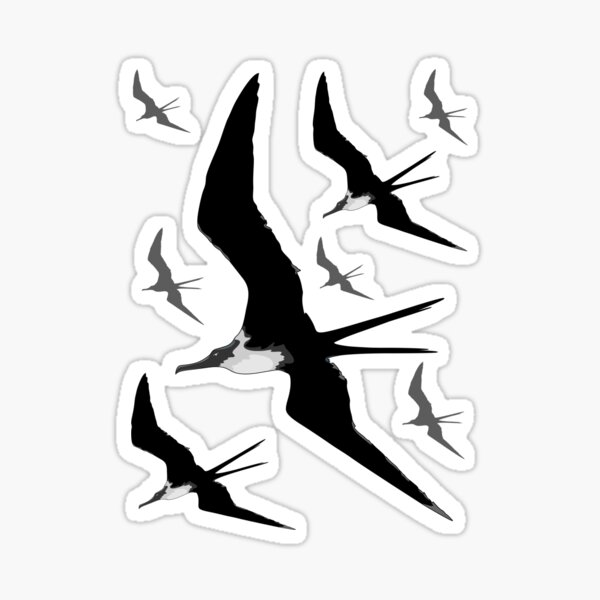 Frigate Birds Flying Sticker
