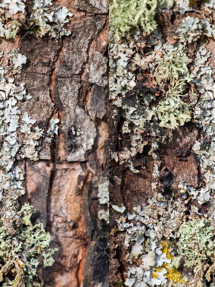 Lichen and Moss on Bark Textured Pattern by c2avilez