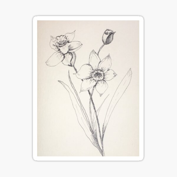 Dancing daffodils by Tola Sticker