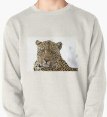 Can Leopards Wink? Pullover