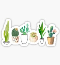 Potted Cacti Sticker