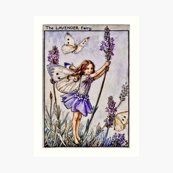 """""""The Lavender Fairy"""" by Cicely Mary Barker 1922 Art Print"""