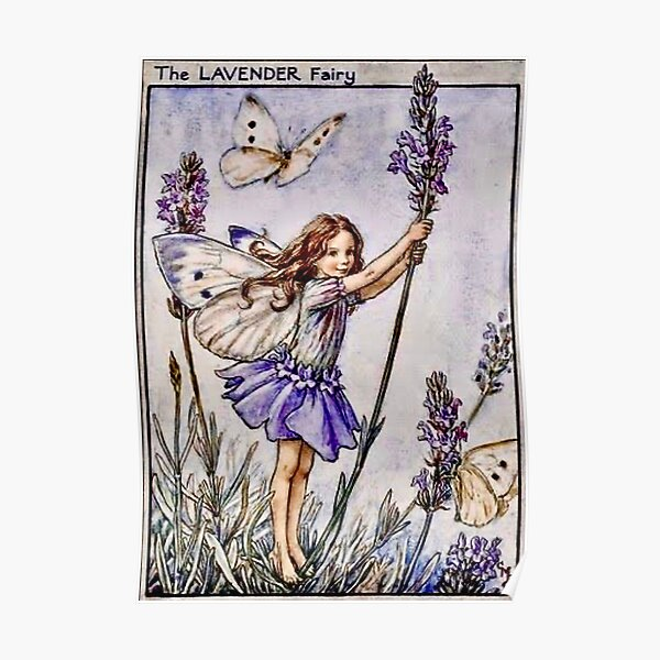 """""""The Lavender Fairy"""" by Cicely Mary Barker 1922 Poster"""