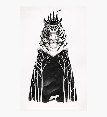 The Siberian King Photographic Print