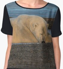 STOCK ~ Lazy Polar Bear Women's Chiffon Top