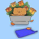 The Best Ber Orange Roses Ber by thebestber