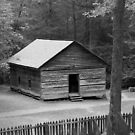Little Greenbrier School II by Gary L   Suddath
