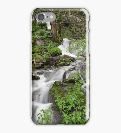 Wet Weather Cascades II iPhone Case/Skin