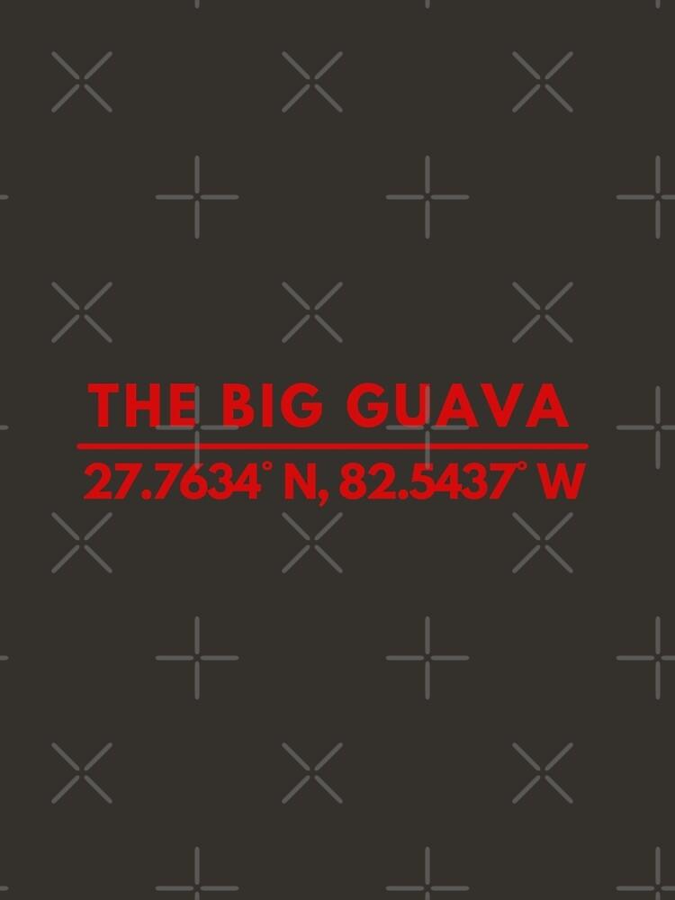 Big Guava Tampa Bay Fan Latitude Longitude Coordinates by BadLatitude