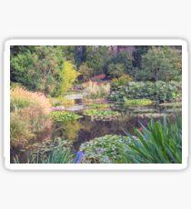 Lily Pond in Autumn - Hobart Botanical Gardens Sticker