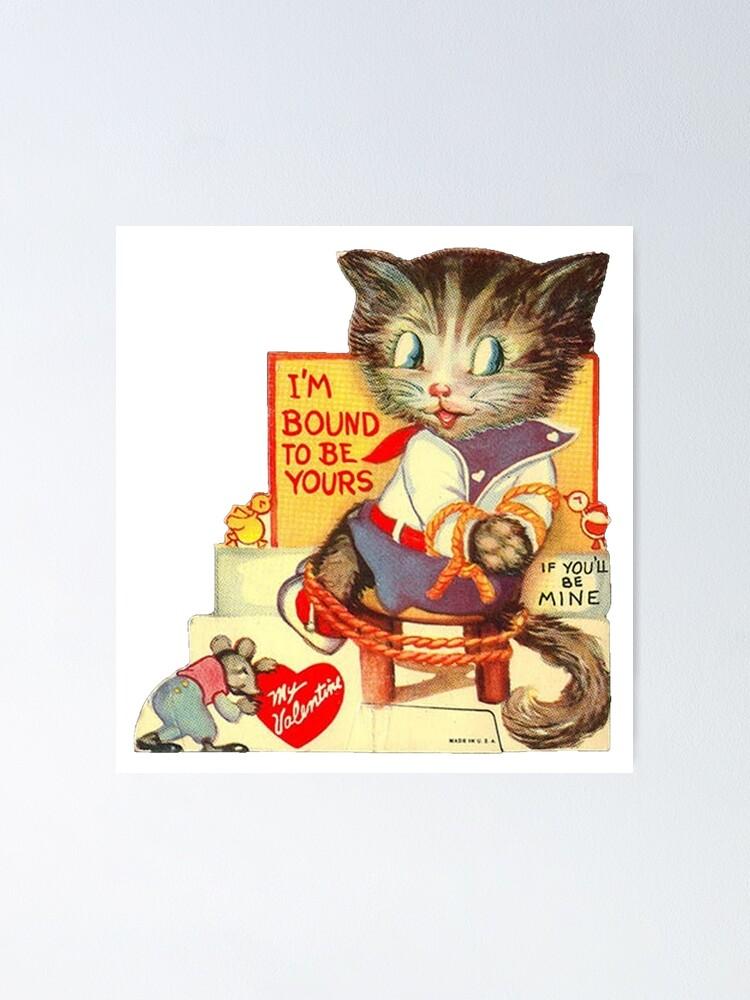 Bondage cat Of Feline