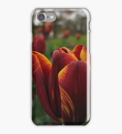 Spring Glory iPhone Case/Skin