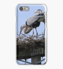Herons in the Sun iPhone Case/Skin