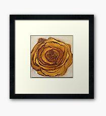 Golden Blossom Framed Print