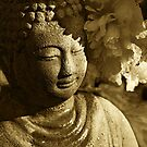 Buddha's Kiss by Catherine Fenner