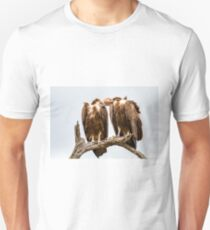 Vulture Couple is Caressing Each Other - Kruger National Park Unisex T-Shirt
