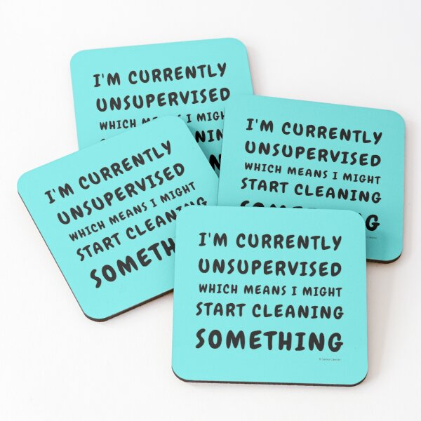 Currently Unsupervised Cleaning Housekeeping Humor Coasters (Set of 4)