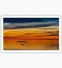 Oneida Lake Sticker