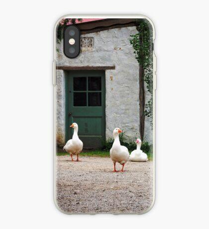 Monsalvat Geese iPhone Case