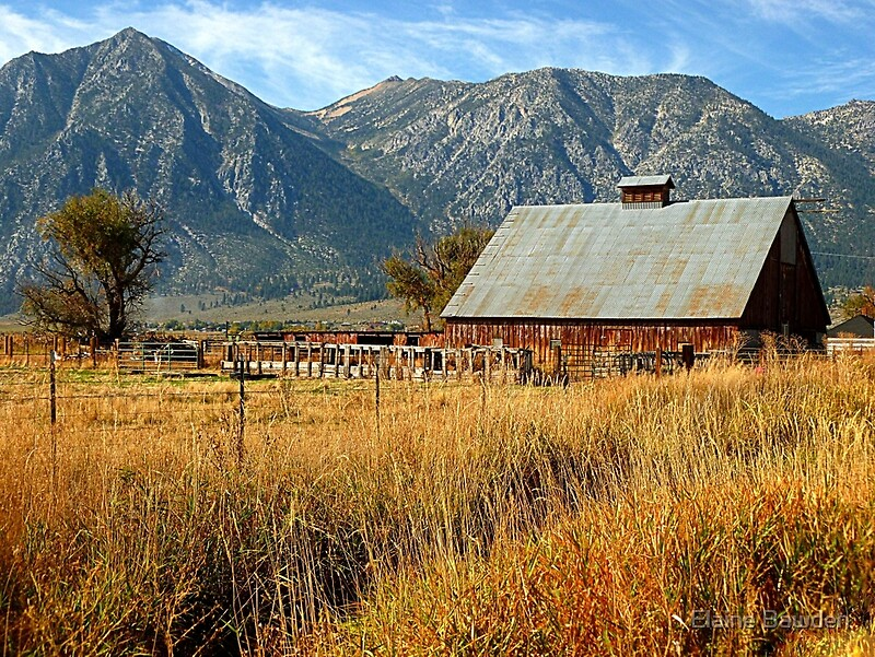 Quot Old Country Barn Quot By Elaine Bawden Redbubble