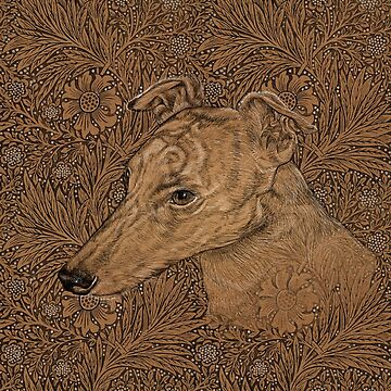 Yumi the greyhound on Morris marigolds by iizzard