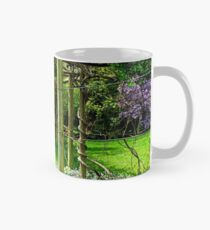 A perfect place to sit in Springtime! Mug