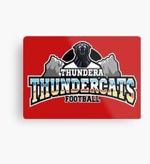 Thundera Thundercats Metal Print