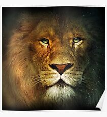 Narnia Lion Poster