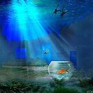 Fish Bowl by Igor Zenin