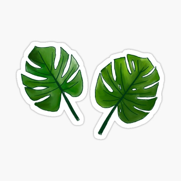 Mostera Leaves Sticker
