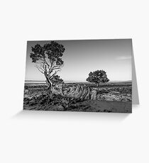 Black and White Woody Greeting Card