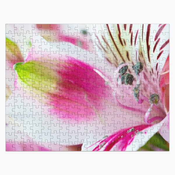 Bright, White and Pink Jigsaw Puzzle