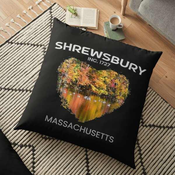 SHREWSBURY Massachusetts Heart-shaped Floor Pillow